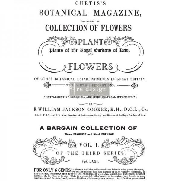 Transfer Botanical Magazine 58 x 80 cm von Redesign