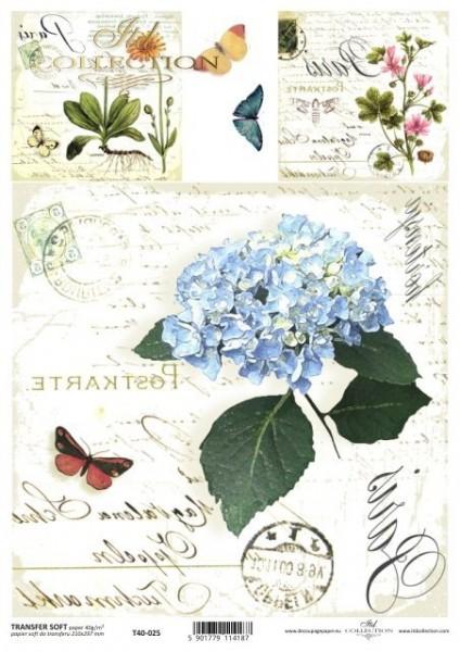 Transferpapier mit Spiegelschrift - Hortensie