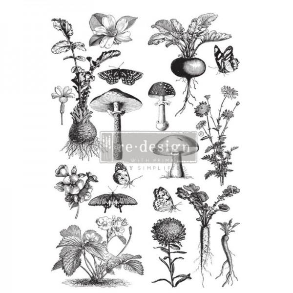 "Transfer ""Fungi Forest"" 60,96 x 88,9 cm von Redesign"