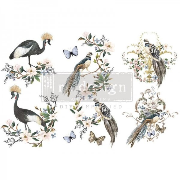 Transfers Rare Birds - 3-teilig á 15,24 x 30,43 cm von ReDesign