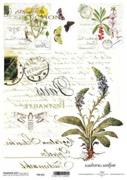 Transferpapier mit Spiegelschrift - blaue Blume