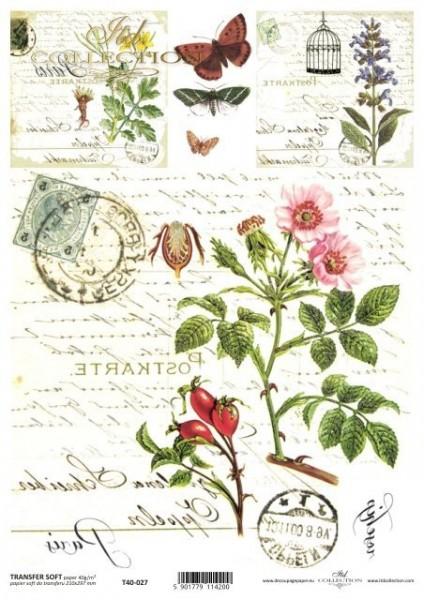 Transferpapier mit Spiegelschrift - Wilde Rose