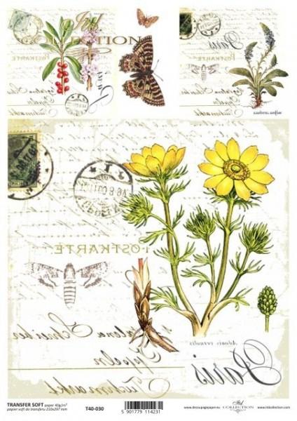 Transferpapier mit Spiegelschrift - gelbe Blume