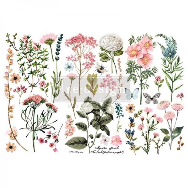 "Transfers ""Botanical Paradise"", 3-tlg. á 15,24 x 30,43 cm von ReDesign"