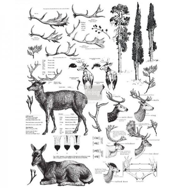 Transfer Deer- 3-teilig, 58,42 x 83,82 cm von ReDesign
