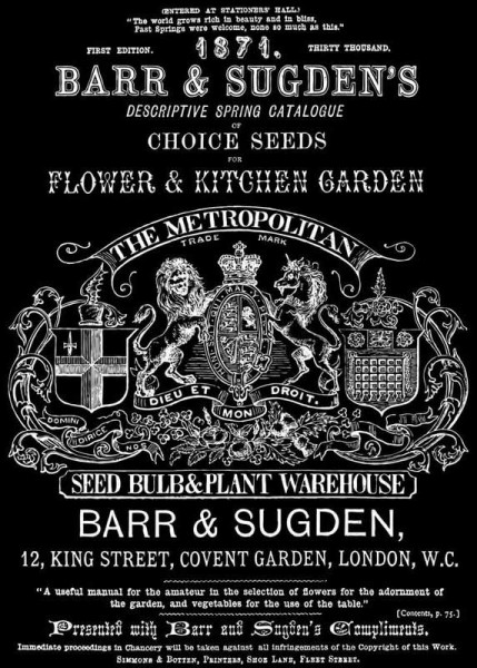 "Decor Transfer ""Barr and Sudgen"" - Iron Orchid Designs (IOD)"