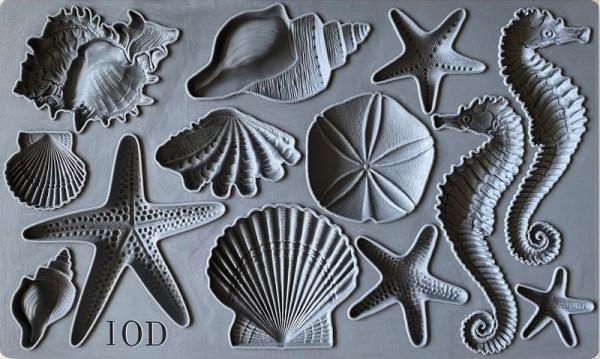 "Decor Form ""Sea Shells"" - Iron Orchid Designs (IOD)"