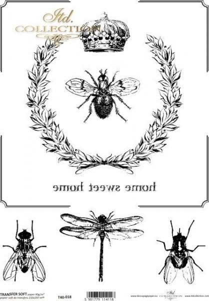 Transferpapier mit Spiegelschrift - Insekten