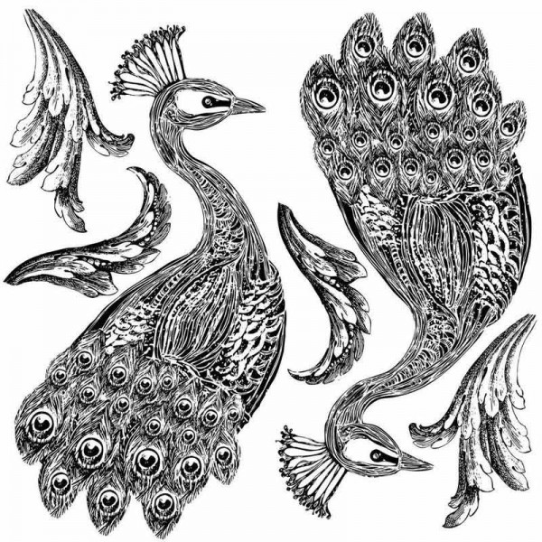 Iron Orchid Designs Pfau