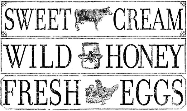 "Decor Transfer ""Farm Fresh Signage"" - Iron Orchid Designs (IOD)"