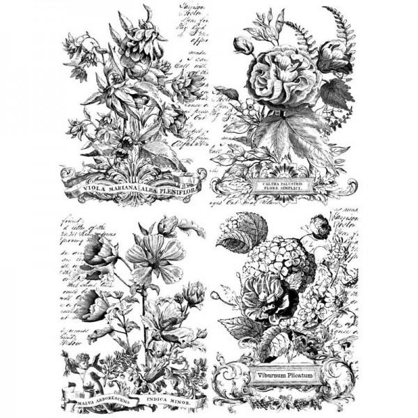 "Decor Transfer ""Classic Bouquets"" bemalbar- Iron Orchid Designs (IOD)-C"