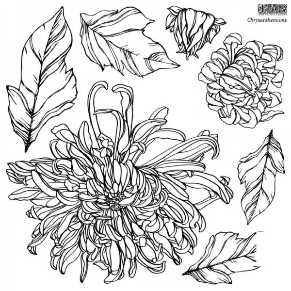 """Decor Stempel """"Chrysanthemums"""" - 2 Bögen - Iron Orchid Designs (IOD)"""